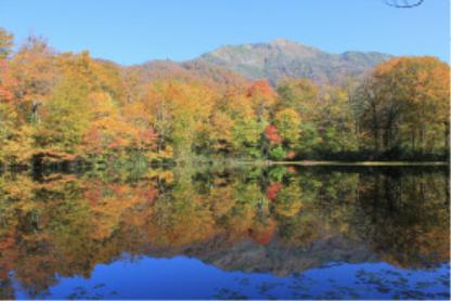 「水面(みなも)に写る秋の色」